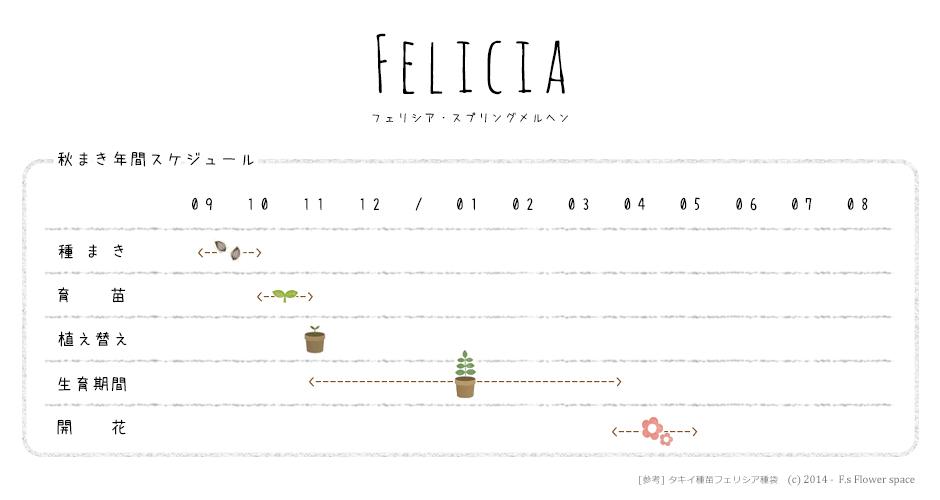 フェリシア栽培の年間スケジュール