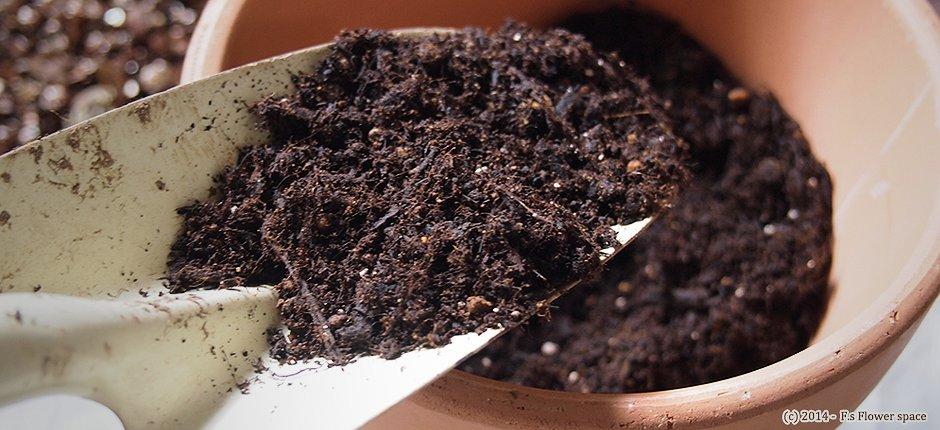 球根用培養土